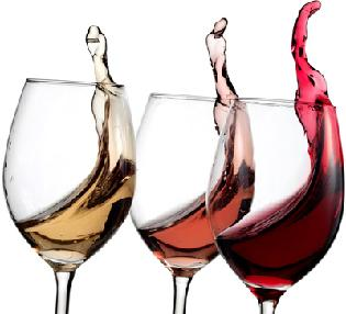 The 15th Annual Winter Wine Spectacular