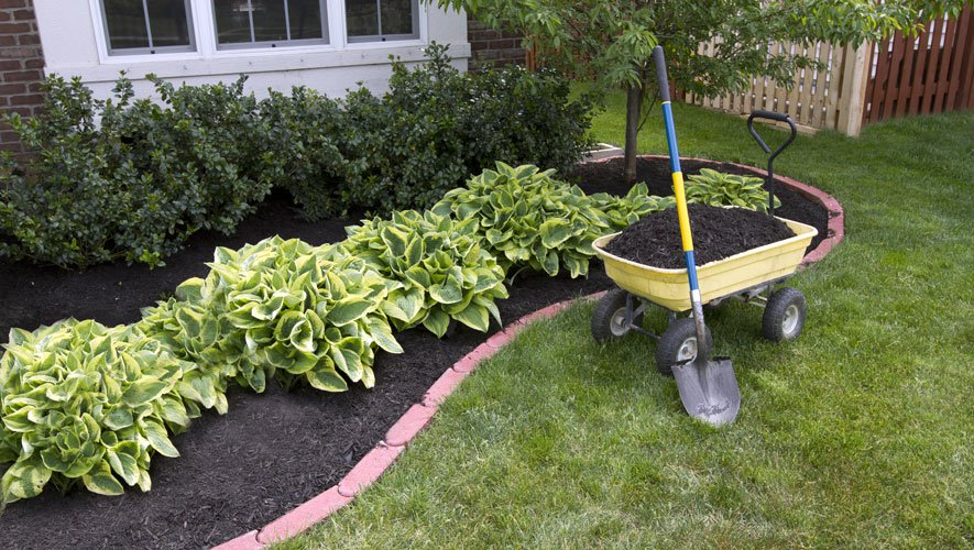 The Humble Host's Gardening Conquest